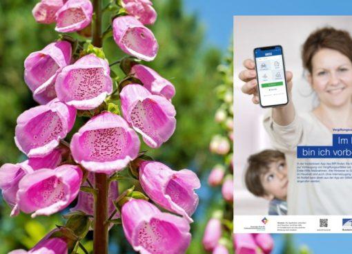 "BfR-App ""Vergiftungsunfälle bei Kindern"""