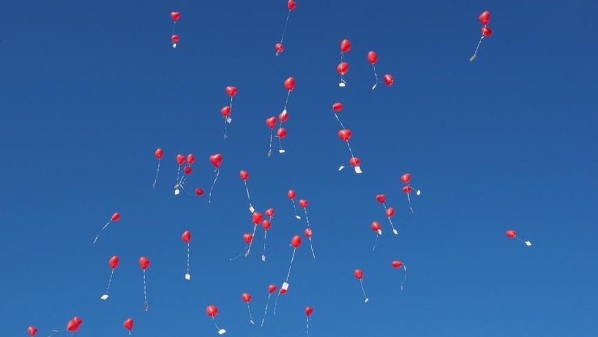 Luftballons: Gefahr für Tier & Umwelt