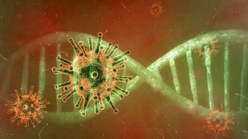 Coronavirus (SARS-CoV-2)
