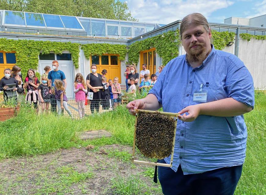 Imker und Erzieher Stephan Ebert zeigt Bienenwabe aus dem ersten Bienenstock - Foto: Bjoern Brodersen